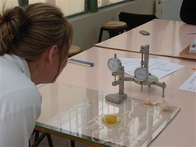 Tavukçuluk Laboratuarı - 213
